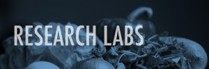 ResearchLabs
